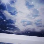 фото1: звездное небо в натяжном потолке - potolkoff.kiev.ua